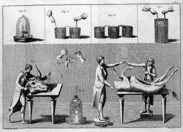 L0007025 Giovanni Aldini, galvanism experiments