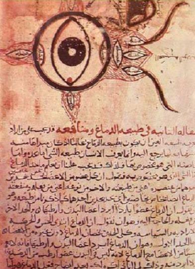 eye 1 - arabia